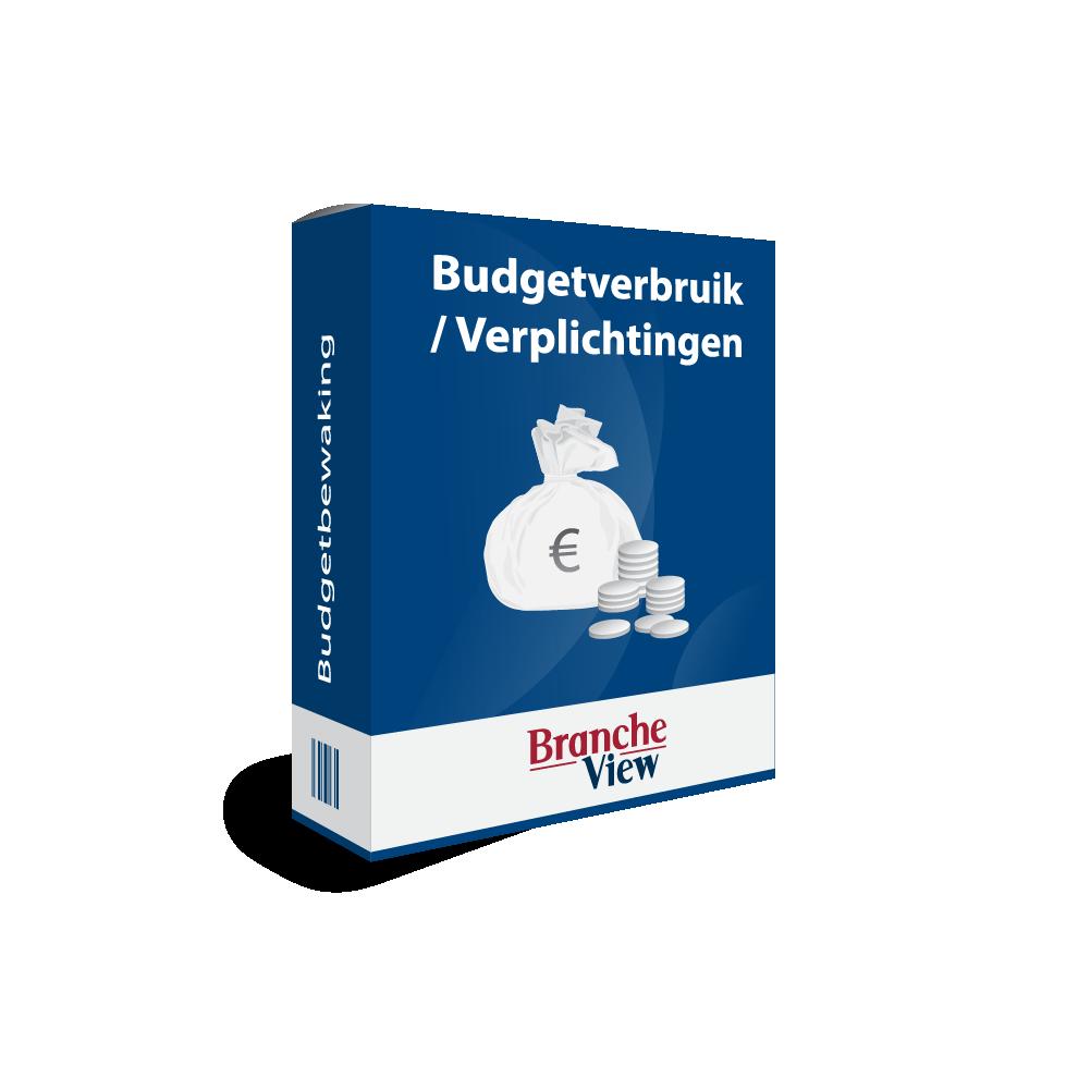 Budgetverbruik / Verplichtingen